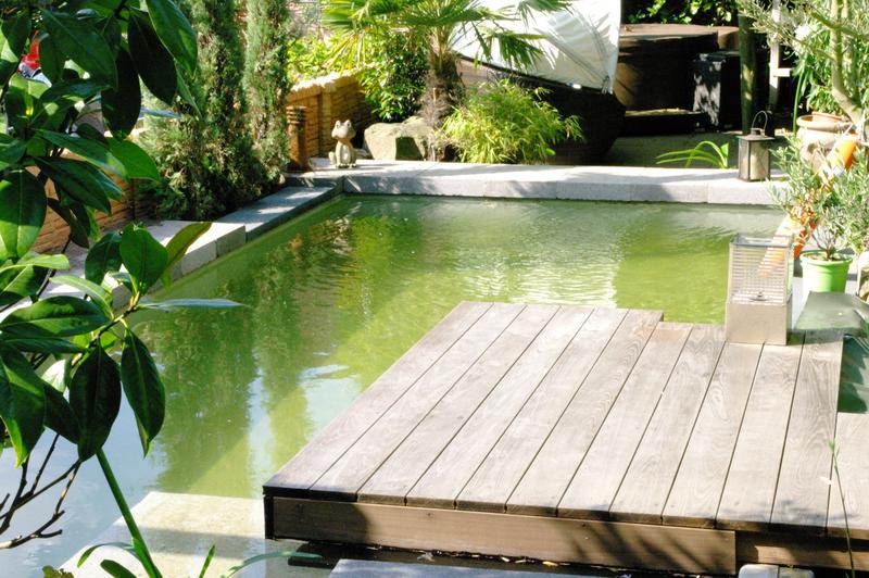 Galabau ri e neuss schwimmteiche pools garten for Garten pool nrw